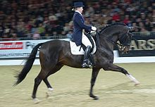 Trakhener.Another.Dressage