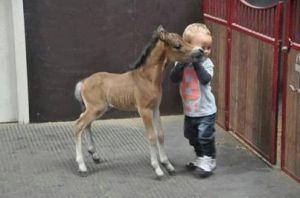 Baby.w.baby.horse
